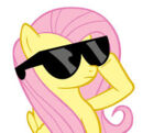 Flutters with sunglasses.jpg