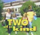 Two of a Kind (TV series)