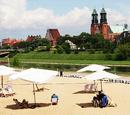 Plaża nad Wartą