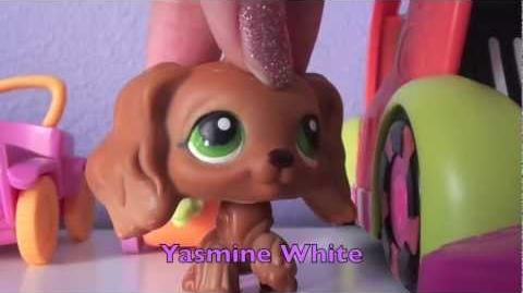 Lps More Than That (Season 2~ Part 2) 9 This Is What Happened