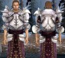 Броня рыцаря-командора