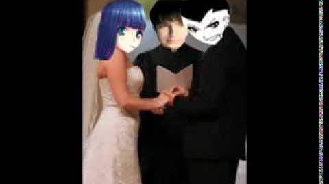 A Daten Wedding Stocking Rose and Steven Star