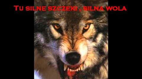 Marsz wilków