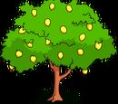 The Springfield Lemon Tree