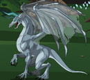 Young Ice Dragon