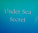 Under Sea Secret