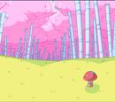 Bosque de Algodón de Azúcar