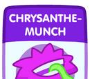 Chrysanthe-Munch
