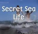 Secret Sea Life