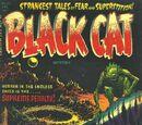 Black Cat Comics Vol 1 47