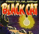 Black Cat Comics Vol 1 49