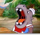 Joey Hippo