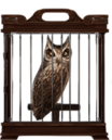 MM Screech Owl.png
