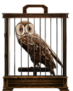 MM Tawny Owl.png