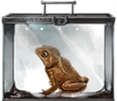 MM Crested Toad.png