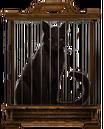 MM Black Cat.png