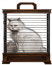MM White Cat.png