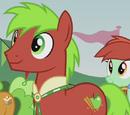 Apple Cinnamon