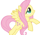 Fluttershy (character)