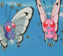 Butterfree and Pink Butterfree