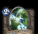 Captain's Parrot