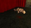 Asesinato de la bailarina