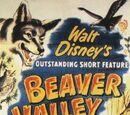 In Beaver Valley