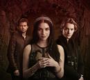 Mary, Francis, and Sebastian
