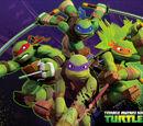 Ninja Turtles/Gallery