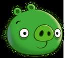 Cerdo Común