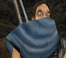 Aidan (szkodnik)