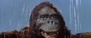 King Kong vs. Godzilla - 56 - Good Morning I Guess.png