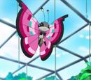 Viola's Vivillon (anime)