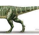 Piatnitzkysauridae