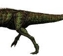 Neovenatoridae