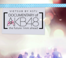 DOCUMENTARY of AKB48 - The future 1mm ahead