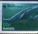 Znaczki-Płetwal błękitny