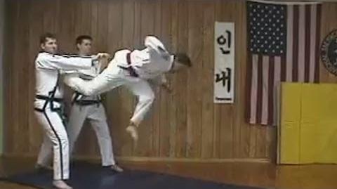 Tame-Ass Karate