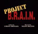 Proyecto Cerebro