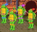 Teenage Mutant Ninja Turtles (team)