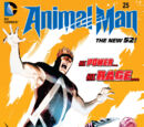 Animal Man Vol 2 25
