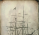 Champion of The Seas
