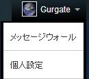 Gurgate/画像やファイルページを探す