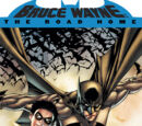 Batman: Bruce Wayne - The Road Home (Collected)