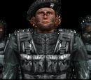 Военные США (Миротворцы)