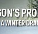 Matt Hadick/Winter Solstice Dragon Giveaway