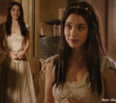 Reign Fashion (Season One)