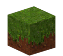 Dirt with Grass