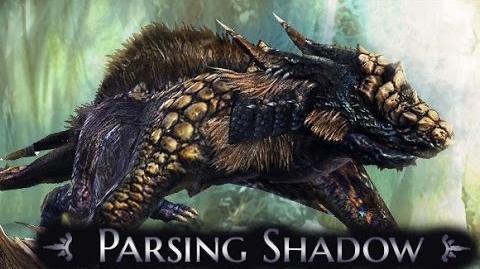 DP Drace Catches Parsing Shadow