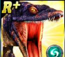 Rare Lariosaurus